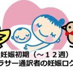 妊娠初期(~12週)|アラサー通訳者の妊娠ログ②