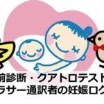 出生前診断・クアトロテスト結果|アラサー通訳者の妊娠ログ③