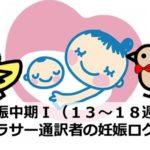 ベビーの性別判明!妊娠中期Ⅰ(13~18週)|アラサー通訳者の妊娠ログ④