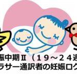 初めての胎動!妊娠中期Ⅱ(19~24週)|アラサー通訳者の妊娠ログ⑤