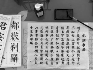 First Year in Beijing, China @ Tsinghua University|Japanese women with zero Chinese skills studies the language (2)